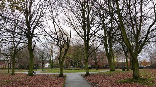 Friends of Wednesfield Park
