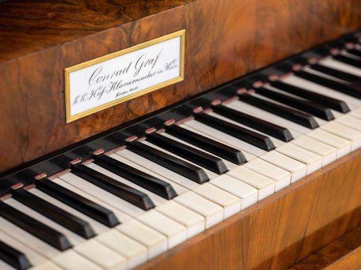Beethoven Erhören, Vorstellung des Spendenprojektes