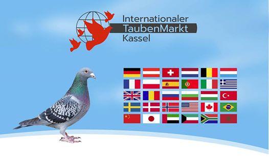 33. Internationaler TaubenMarkt Kassel